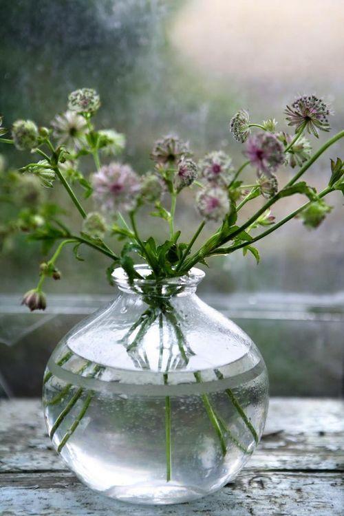 700_blomsterkurset-image-3.jpg