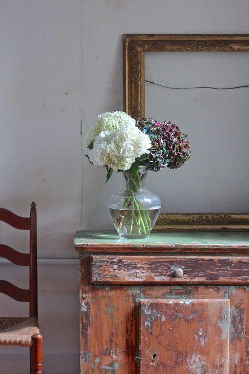 Hydrangeas, gardenista